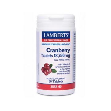 http://flordevida.es/herbolario-dietetica-tienda/141-thickbox/arandano-rojo-18750-mg-60-capsulas-lamberts.jpg