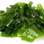 Los beneficios de las algas