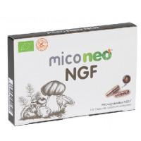 MICO NEO NGF 60 Cápsulas (NEOVITAL HEALTH)