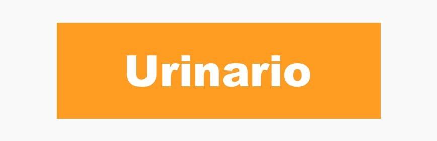 Aparato genito-urinario