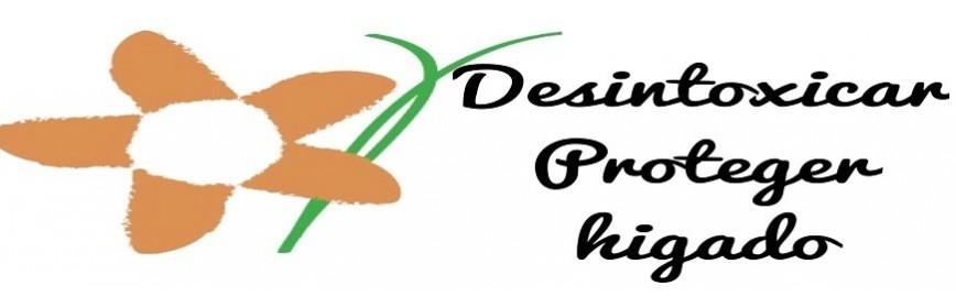 Desintoxicar / Proteger hígado